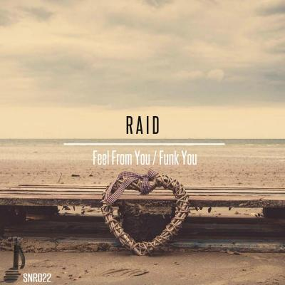 Raid dnb